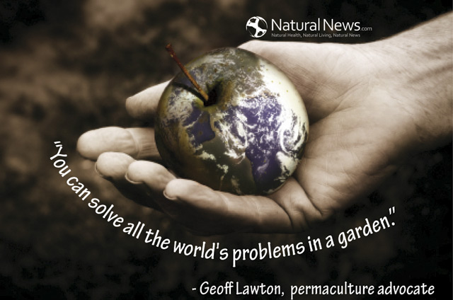 you can solve all the world s problems in a garden