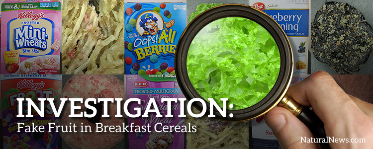 Investigation breakfast cereal fruits and berries are faked many of the fruits used in popular breakfast cereals are really just fake fruits made out of refined factory ingredients like ccuart Gallery