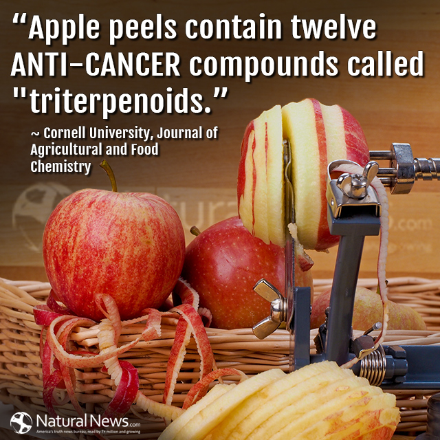 Apple peels contain twelve anti-cancer compounds called