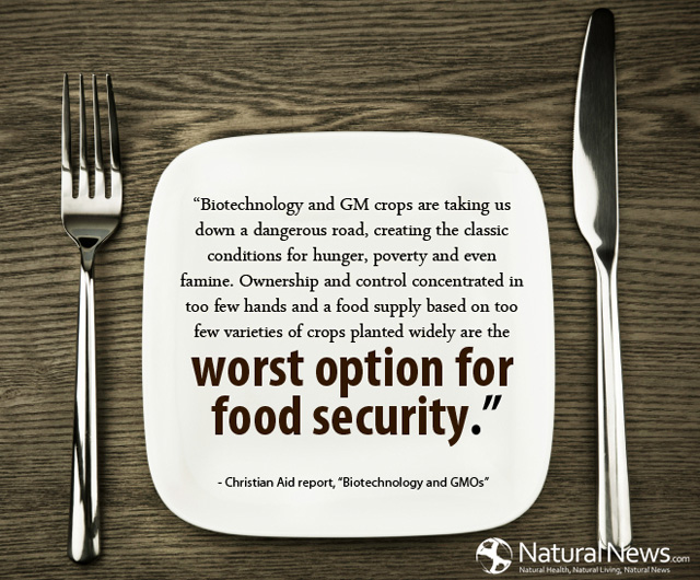 Biotechnology and GM crops are taking us down a dangerous road | CHENNAI  YOUTH TIMEZ