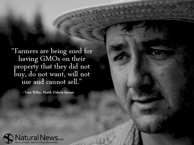 Farmers Quote Interesting Farmers Are Being Sued For Having Gmos On Their Property