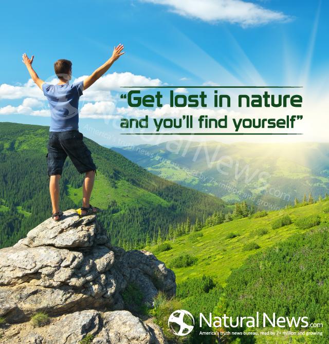 найти картинки природы