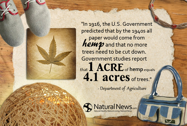 In 1916, the U.S. Government predicted that by the 1940s all paper would come from hemp...