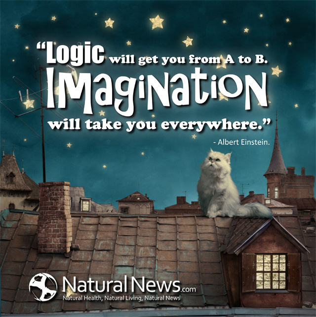 logic will get you from a to b imagination will take you