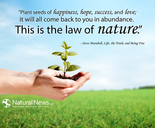 Quotes About Planting Seeds