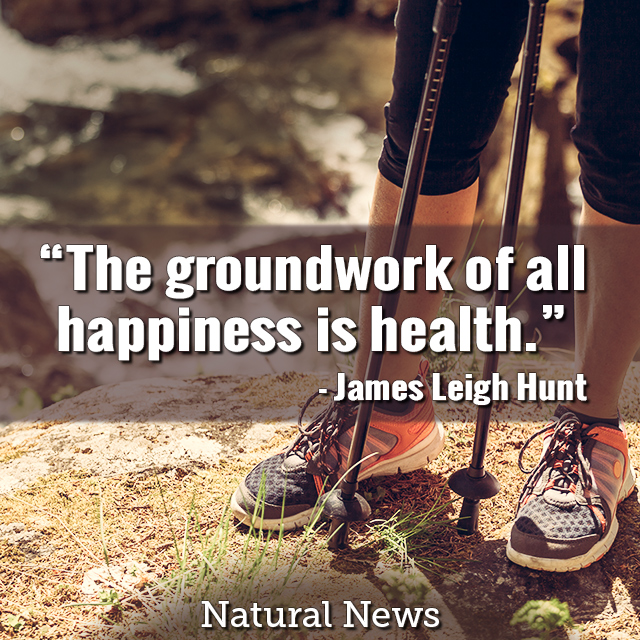 The groundwork of all happiness is health