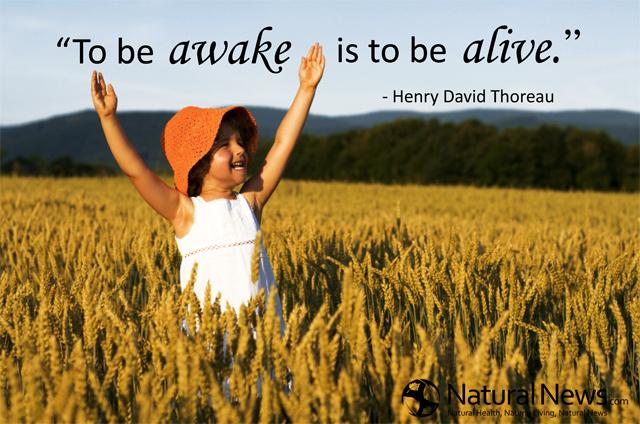 to be awake is to be alive naturalnewscom