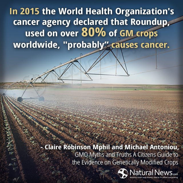 In 2015 the World Health Organization's cancer agency declared that Roundup...