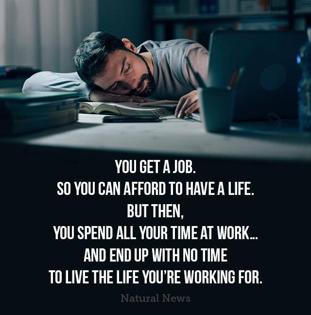 You Get a Job...