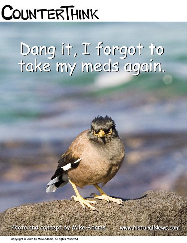 Take Your Meds