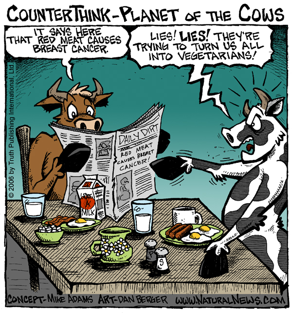 Cows for breakfast