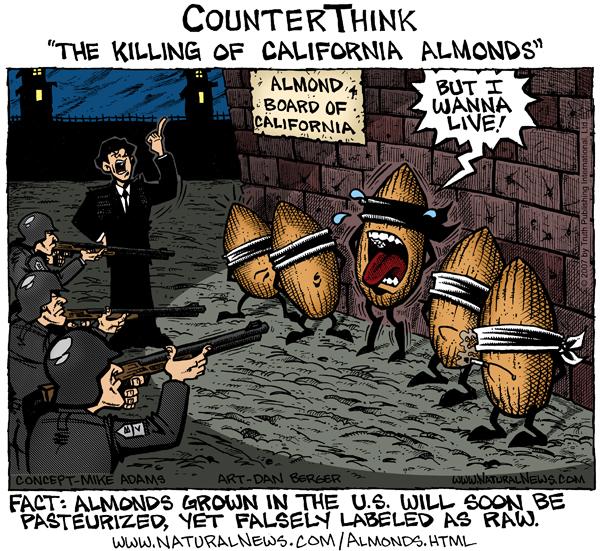 The Killing of California Almonds