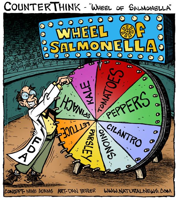 The FDA's Wheel of Salmonella