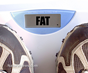 Six weight loss myths that are making you fatter