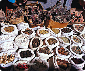 Herbal cures