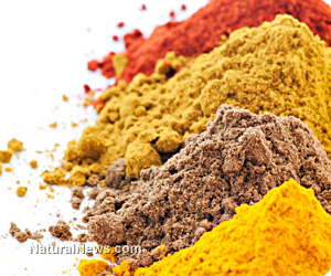 Organic spices