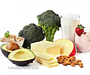 Vitamin E intake and the lung cancer risk among female ...