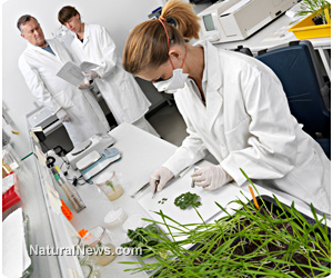Chemical-resistant superweeds