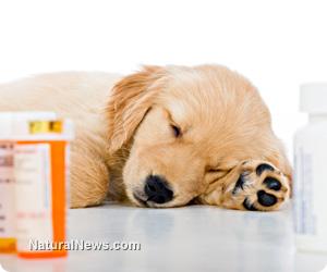Prozac prescriptions