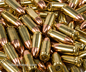 Ammo supply