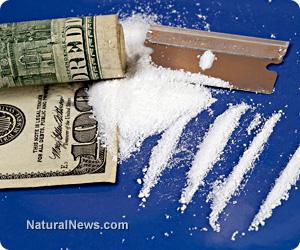 Cocaine vaccines