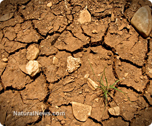 Severe drought