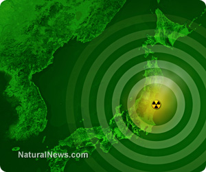 Now in a State of Emergency!  Fukushima Leaking 300 Tons of Radioactive Water into the Ocean Daily