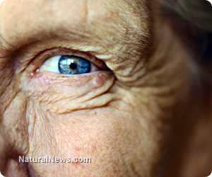 Human eye cells