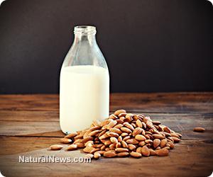 Nut milk recipes