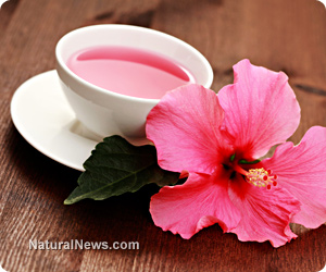 Lower your blood pressure with hibiscus tea