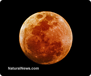 Blood moon eclipses