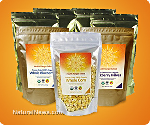 Freeze-dried corn