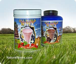 One World Whey