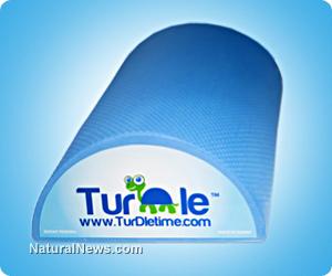 Turdle