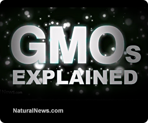 GMOs explained