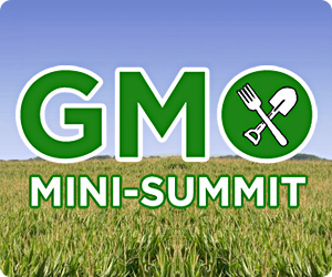 GMO summit