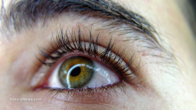 Health Foods And Cataracts