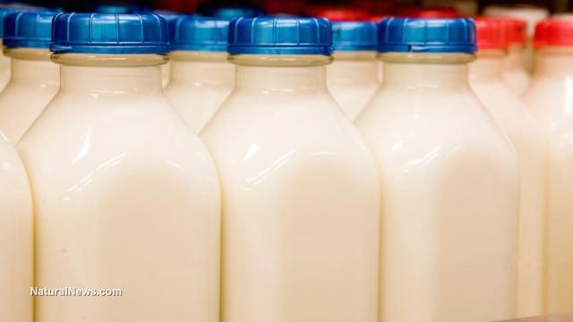 Milk beverage