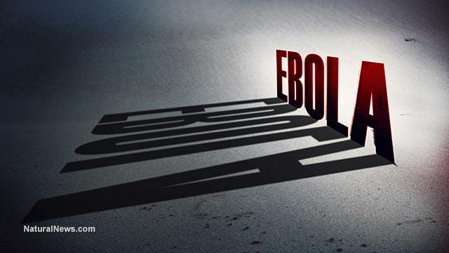 Ebola tests