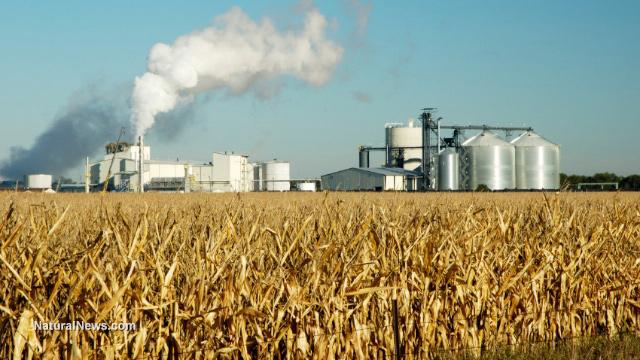 Ethanol myths