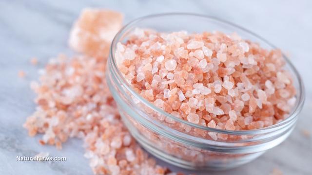 Himalajeva sol