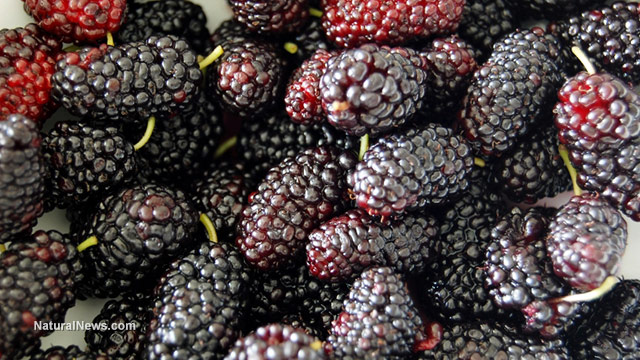 5 benefits of mulberries for skin, hair and health