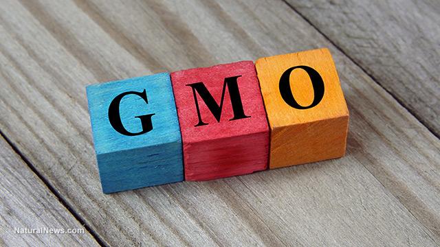 GMO propaganda