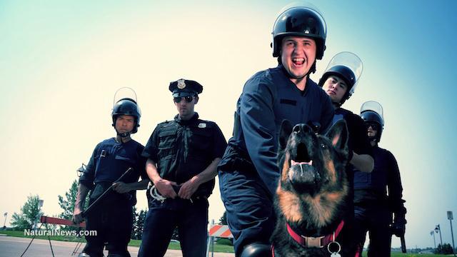 Drug-sniffing dogs