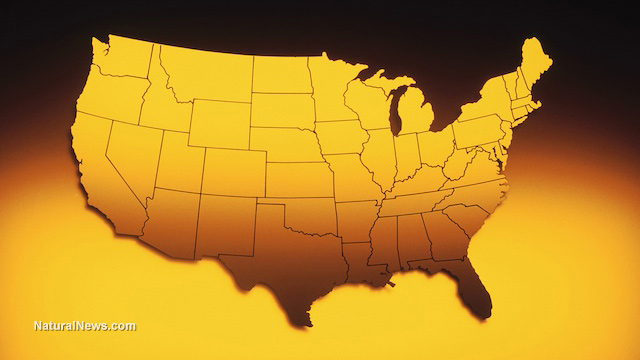 Veterans news site claims...   Ebola intentionally spread across USA as part of 'organized terror plot'