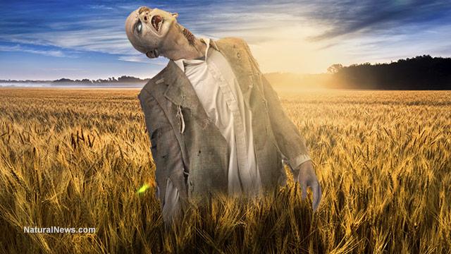 zombie apocalypse,disaster preparedness,Kansas