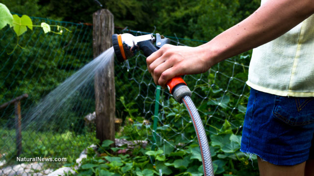 California to begin fining residents for taking long showers while the rich use the last drops of water for landscaping
