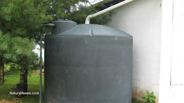 Oregon man serving prison sentence for collecting rainwater on his own property