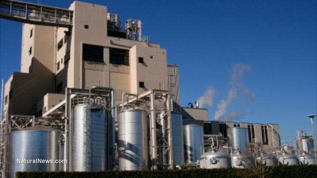 Corn biofuels