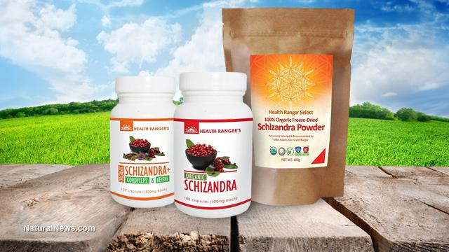 Schizandra berry,organic powder,Traditional Chinese Medicine